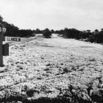 PH-O-5-8-2  Oswestry Racecourse 18 October 1973