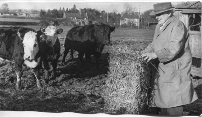 PH-R-13-22 - John Kynaston working at his smallholding on his 90th