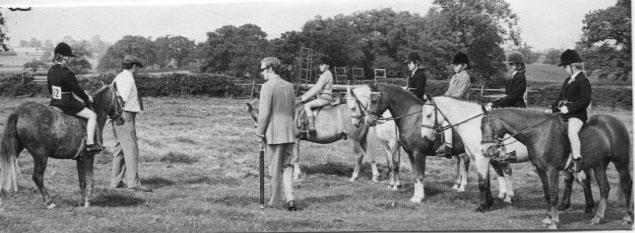 PH-S-2-3 - Criftins Pony Show & Gymkhana, Aug 1973; Class 1