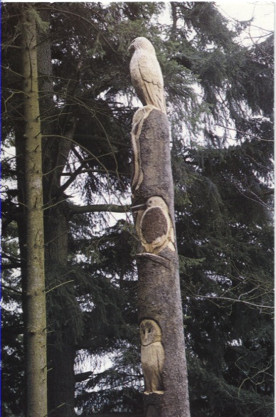 PC-L-42-15 - Pecking Order Pole 1990's