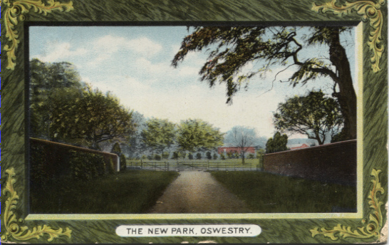 PC-O-5-6-119 - The New Park - Cae Glas - 26 Aug 1911
