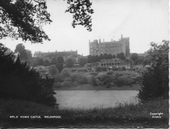 PC-P-31-6 - Powis Castle c1950's