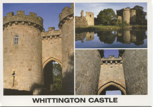 PC-W-20-18 - Whittington Castle 2006
