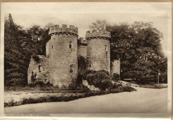 OSW-PC-W-20-24 - Whittington Castle