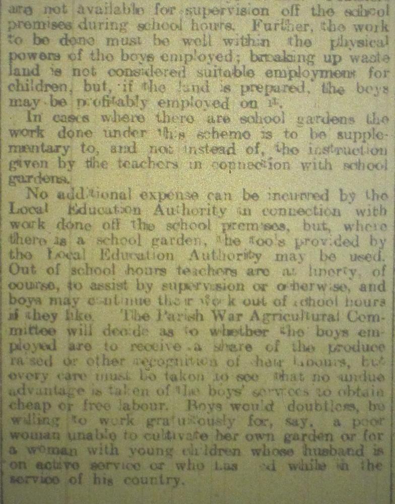 NP-WW1- Children Growing Veg March 1917-2