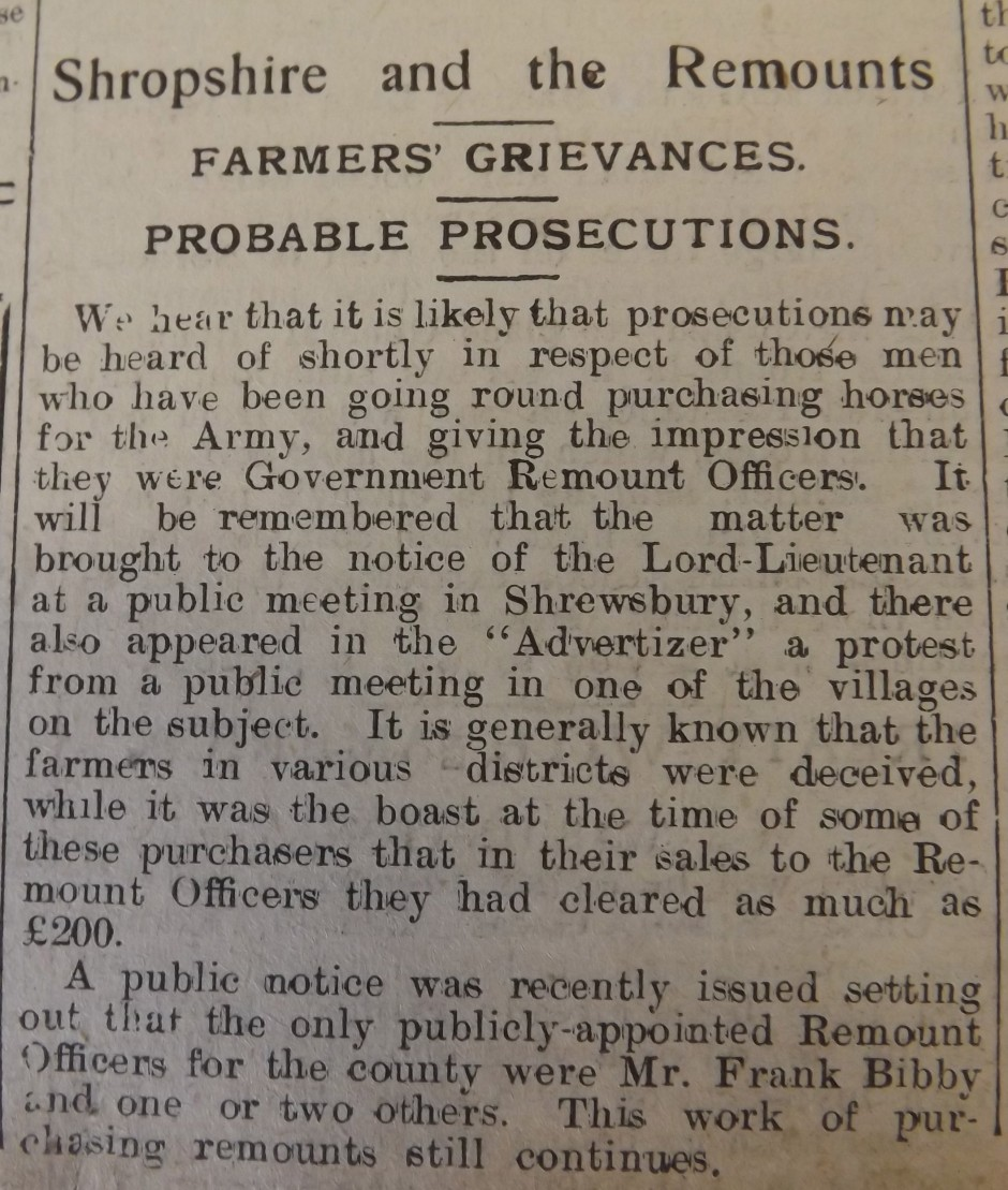 NP-WW1- Horse Purchasing - Sep 1914