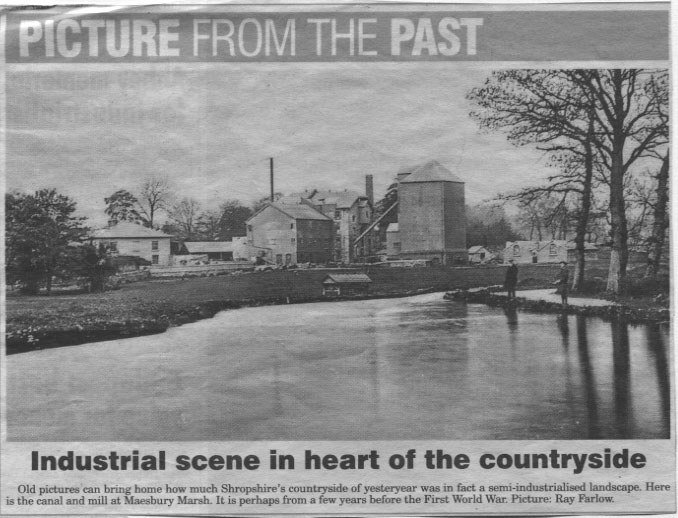 NP-M-3-8 - Maesbury Marsh Mill & Canal c1914