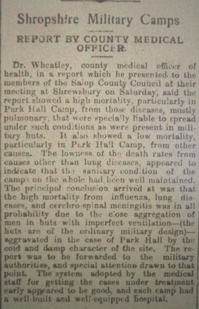 NP-WW1- Report County Medical Officer - 1917