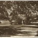NM-E-8-20-43 - Cremorne Gardens Ellesmere