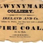 PH-O-5-10-100 - Llwynymaen Colliery 1831
