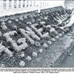 NP-O-5-13-38 - Eli Roberts tending flower borders